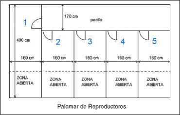 palomar_palomar4