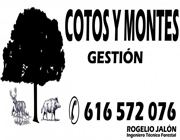 gestion montes y cotos logo