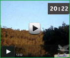 video_port_sali